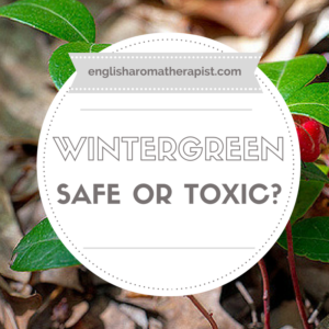 Is Wintergreen oil safe or toxic?