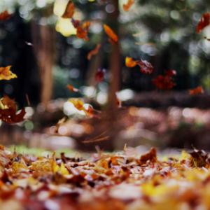 Hygge autumn