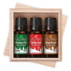 Home for the Holidays Gift Set Plant Therapy