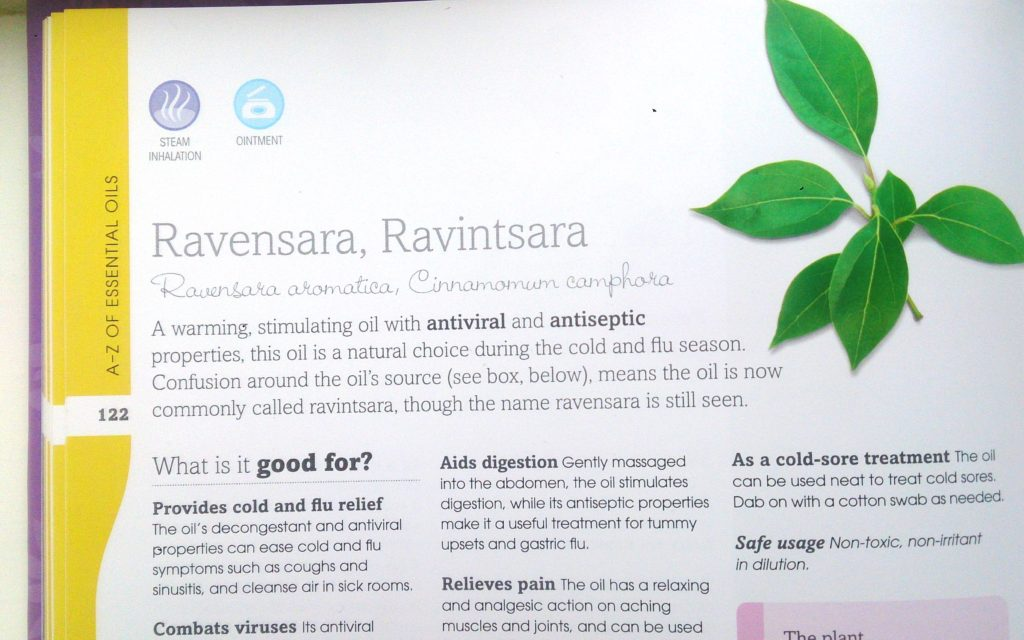 Ravensara or Ravintsara - What is the difference?