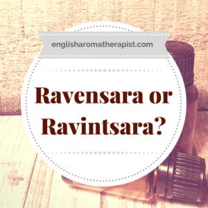 Ravensara or Ravintsara?