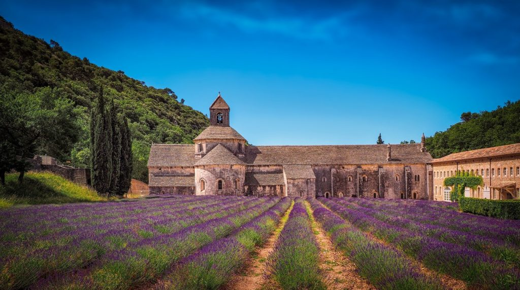 What is the French School of Aromatherapy